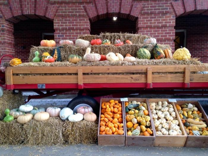 3. Hernando Farmers Market