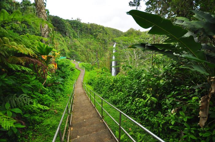 3. Akaka Falls #2