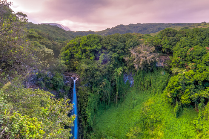 Next, just a half-mile from the trailhead, you will arrive at the stunning 180-foot Makahiku Falls, perhaps one of the island's most captivating waterfalls. The water cascades over a verdant cliff covered with bamboo and prehistoric-looking ferns, into the postcard-worthy rainforest.