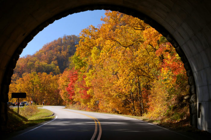 1. In 1935, construction began on the Blue Ridge Parkway.