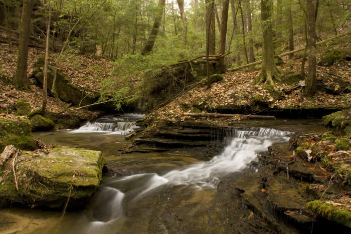 10. Spend an afternoon exploring the Sipsey Wilderness.