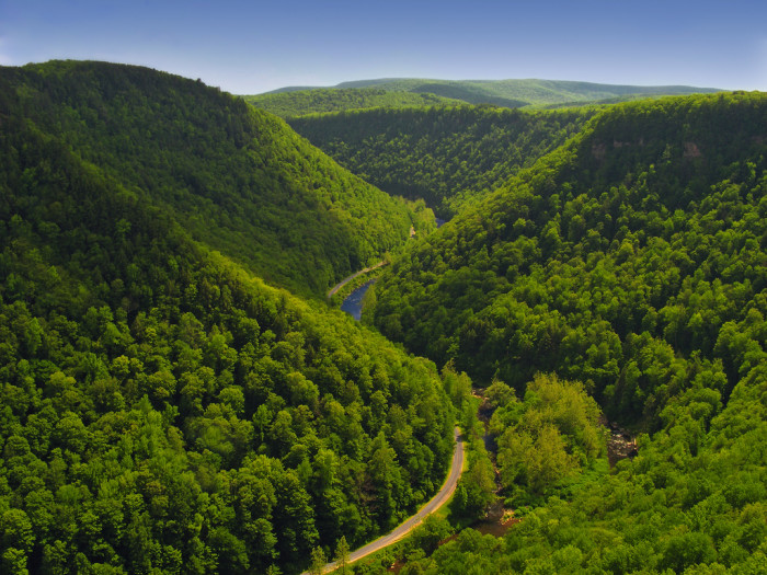 8. The breathtaking Pine Creek Gorge from above.