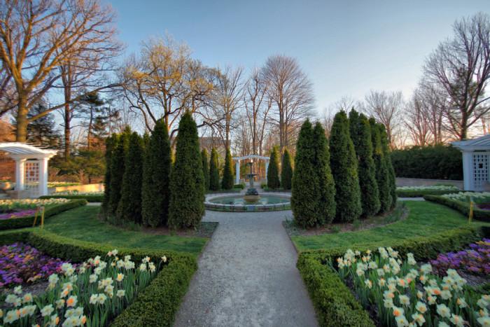 ima gardens experiencing a dream