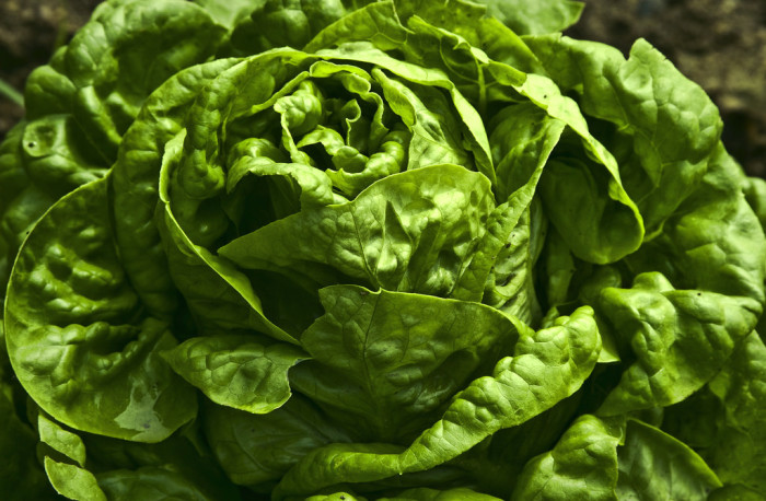 1. Arizona produces 90% of the country's leafy green vegetables during the winter months.