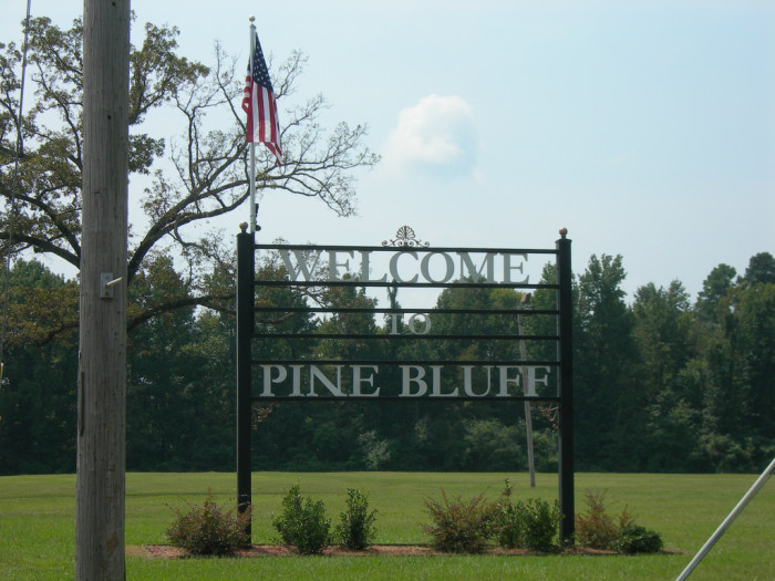 7.  In 2013, only Detroit had a higher crime rate per citizen than Pine Bluff, Arkansas. Pine Bluff only has a population around 49,000.