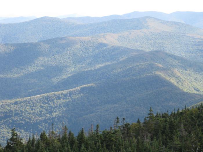 3.  Breadloaf Wilderness