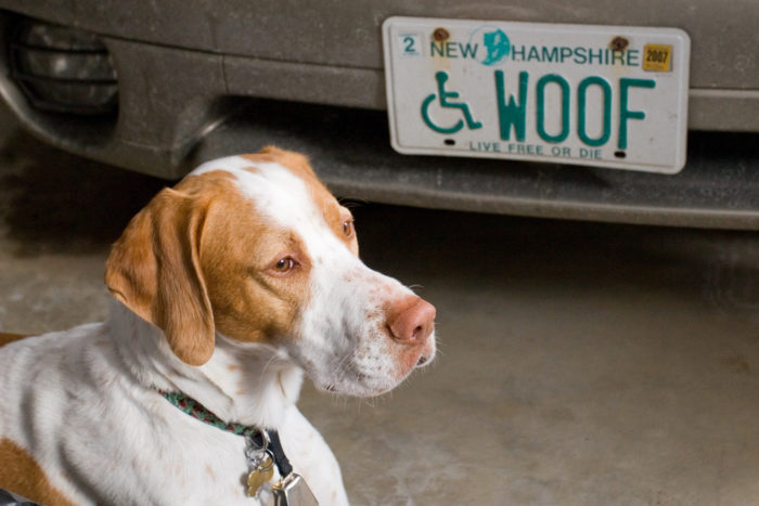 3. New Hampshire license plates are manufactured in state prisons.