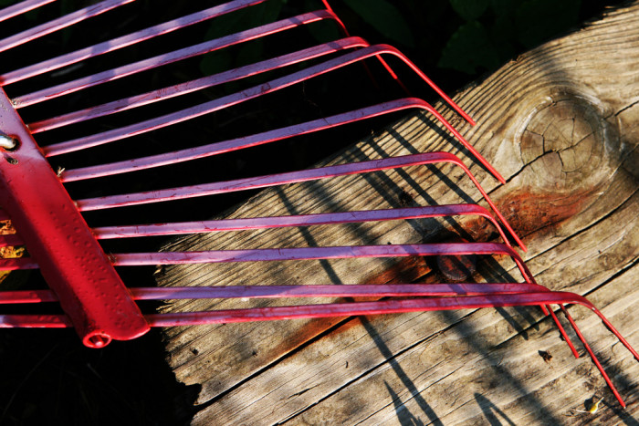 2. Here's a little gem of a law in Acworth: All citizens must own a rake.