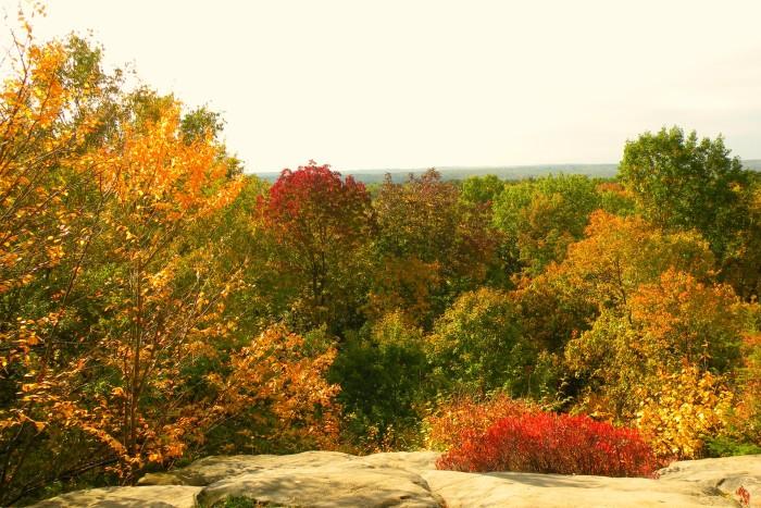 8. Ledges Scenic Overlook