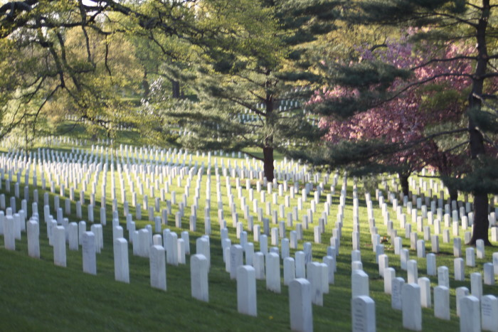 2. Arlington National Cemetery