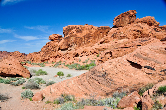 9. Nevada has the BEST state parks.