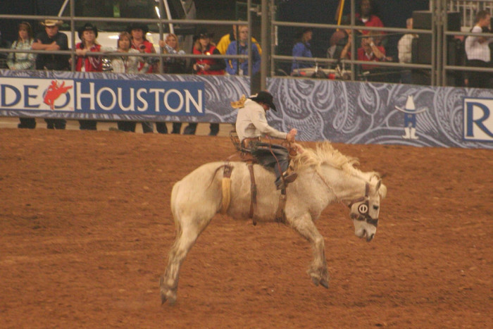 14. We have the biggest rodeo in the WORLD.