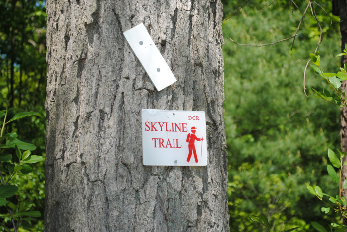 12. Hiking the Skyline trail in Middlesex Falls is convenient and fun. This 7-mile path is located just 30 minutes from the city.