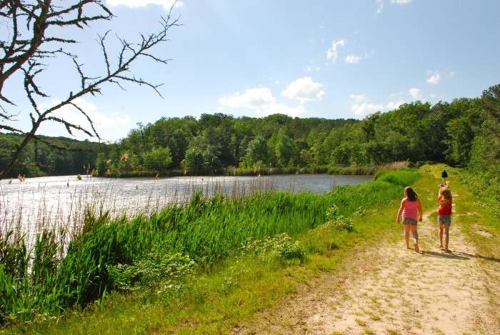 6. The beauty of Maryland State Parks.