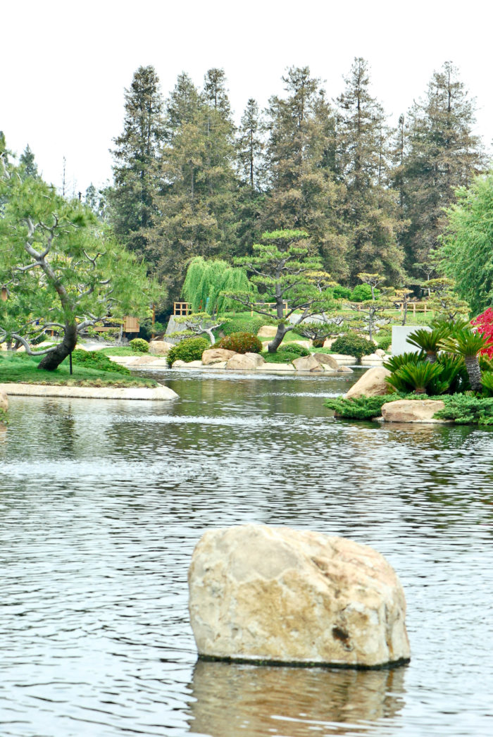 1. The Japanese Garden is a peaceful escape after a hectic day.