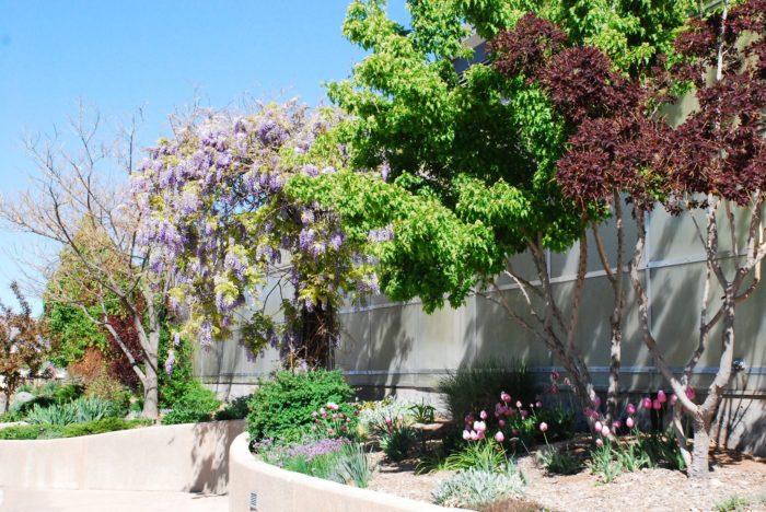 8. Western Colorado Botanical Gardens (Grand Junction)
