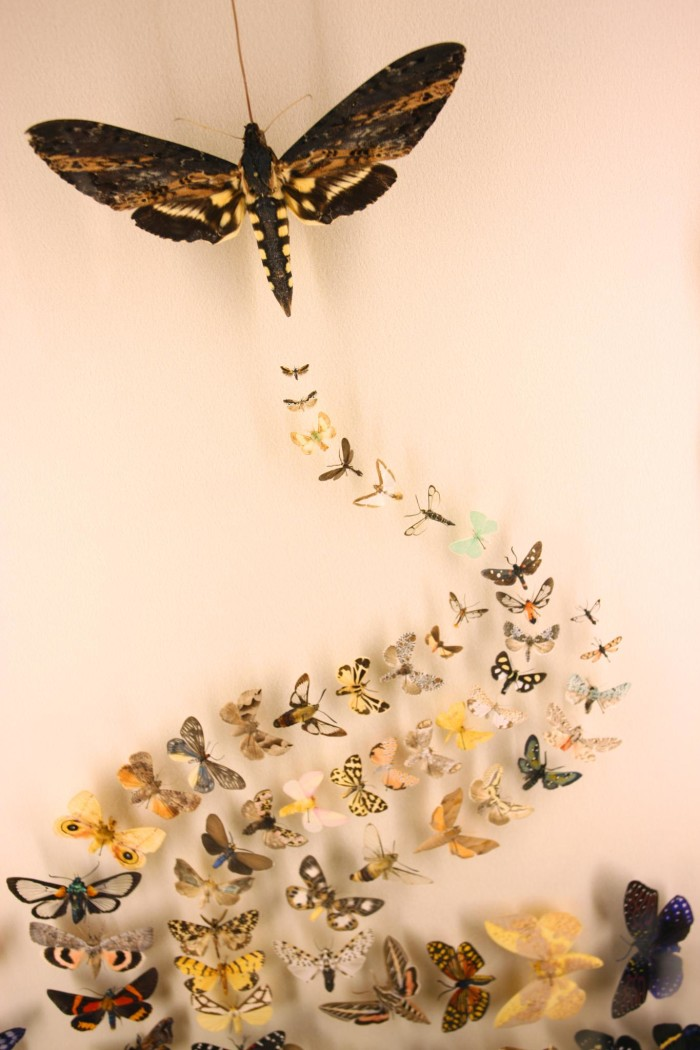 7. Insectarium, 423 Canal St., New Orleans