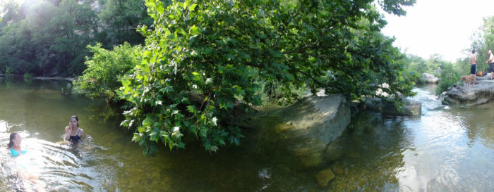 7. The Greenbelt stretches throughout Austin and has so many treasures like this secret spot in the water.
