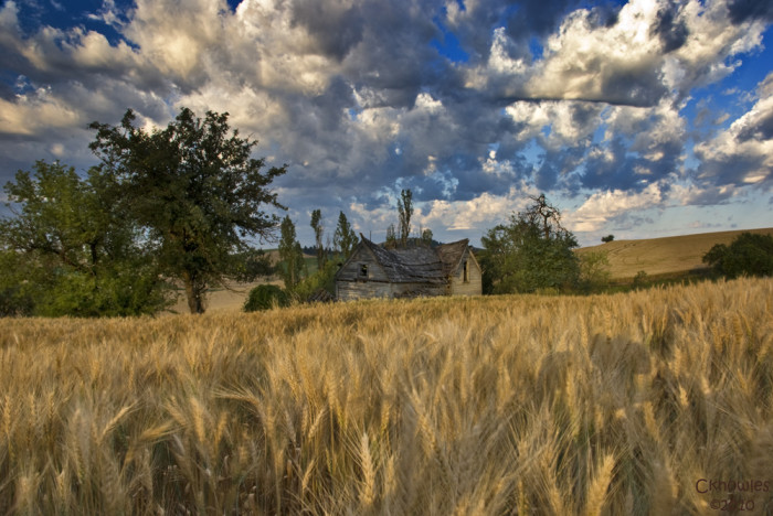 12. This homestead in the Palouse marks the transition between Southern and Northern Idaho.
