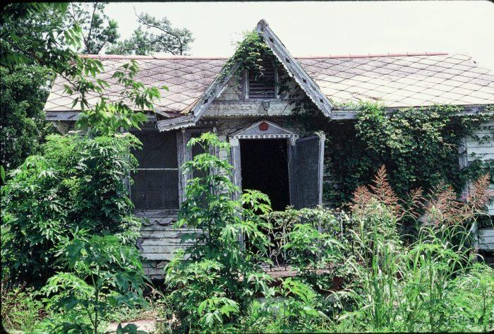 3) Abandoned house center hall greenery
