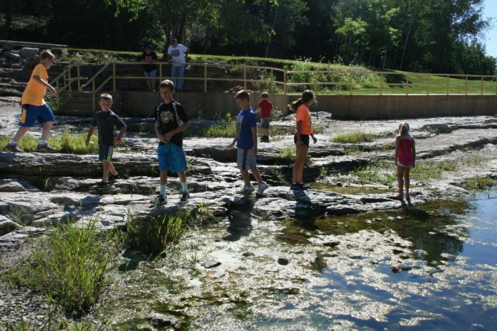 5. Discover ancient fossils at the Devonian Fossil Gorge in Iowa City.