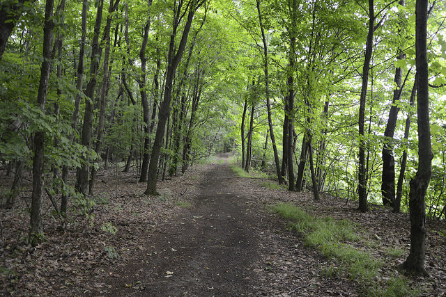 5. Rachel Carson Trail