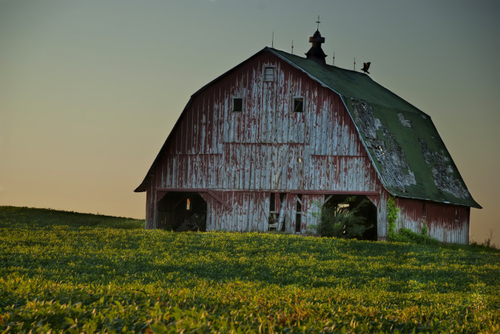 5. Charming countryside scenes of worn old barns sitting comfy in a field.