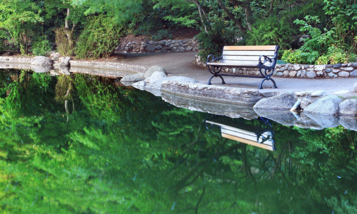 6. Reflections in the water at the serene Lithia Park in Ashland.