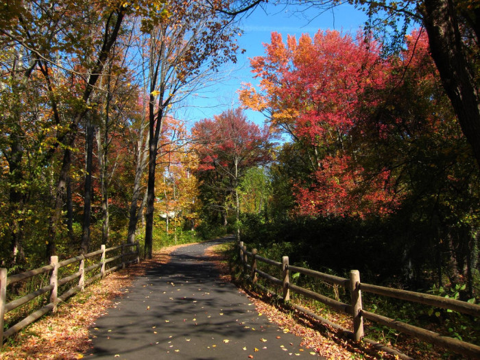 In addition to a state park, the enchanting 84-mile Farmington Canal Heritage Trail that runs through the town offers outdoor families an unparalleled local option for exploration.