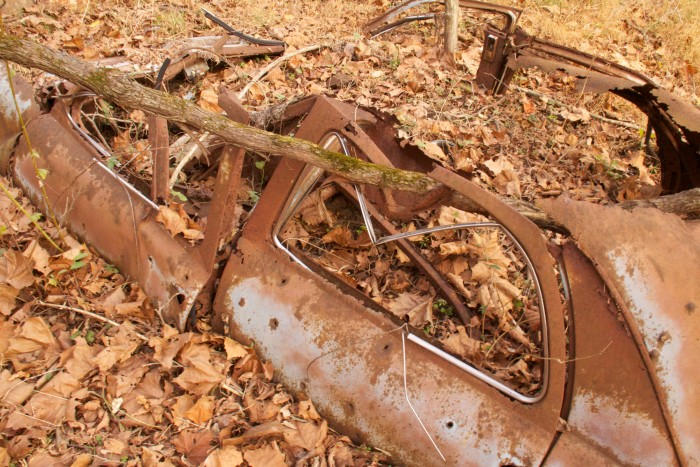 You can find even more vehicles buried under leaves and branches. The scene is almost post-apocalyptic.