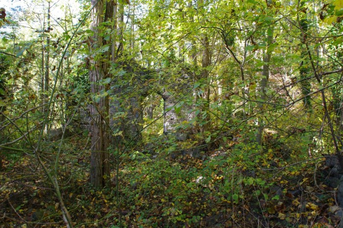 A walk through this wooded area may seem ordinary at first, until you spot what appears to be a stone wall.