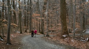 These 15 Hiking Spots in Delaware Are Completely Out of This World