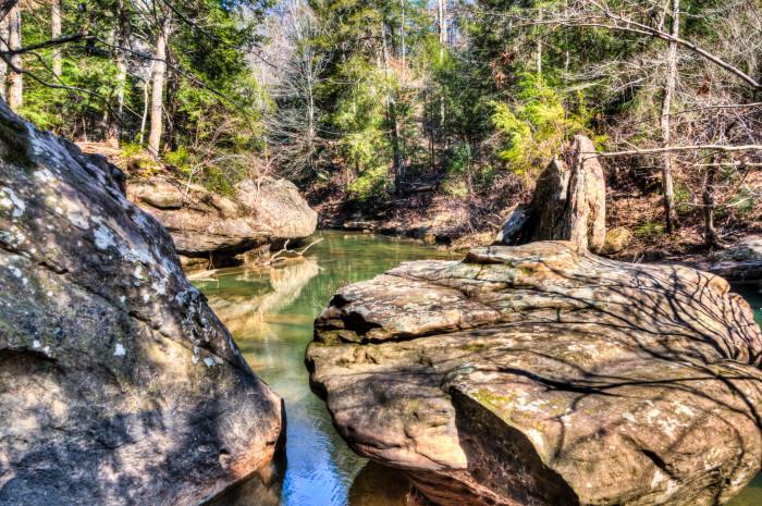 4. Sipsey Wilderness
