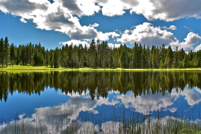 6. This absolutely pristine shot captures Northern Idaho's mirrored waters to perfection.