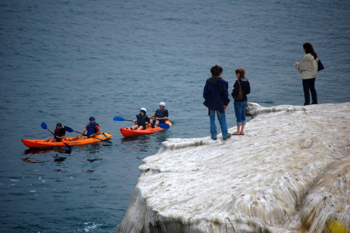 14. Kayaking at La Jolla Cove. Or, if you're not up for a day in the water, watching other people kayak counts too!