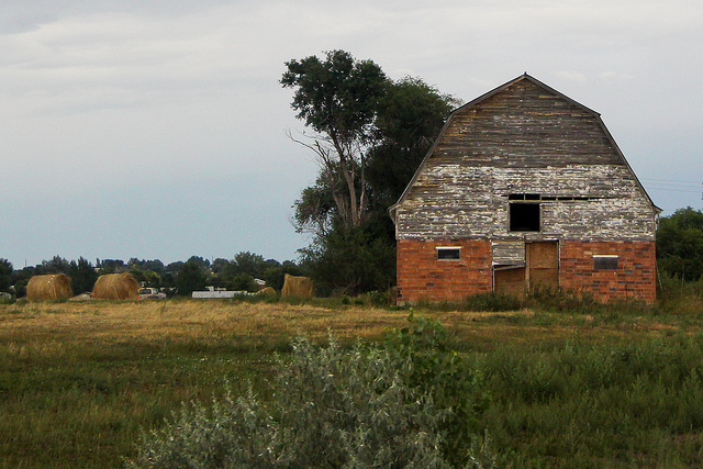 8. Not to mention, beautiful old barns filled with treasures.