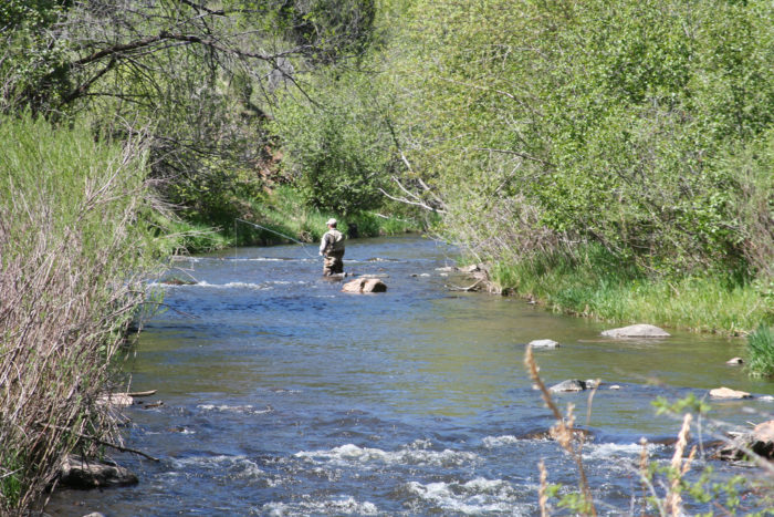 3. Bear Creek Trail at Lair O' the Bear