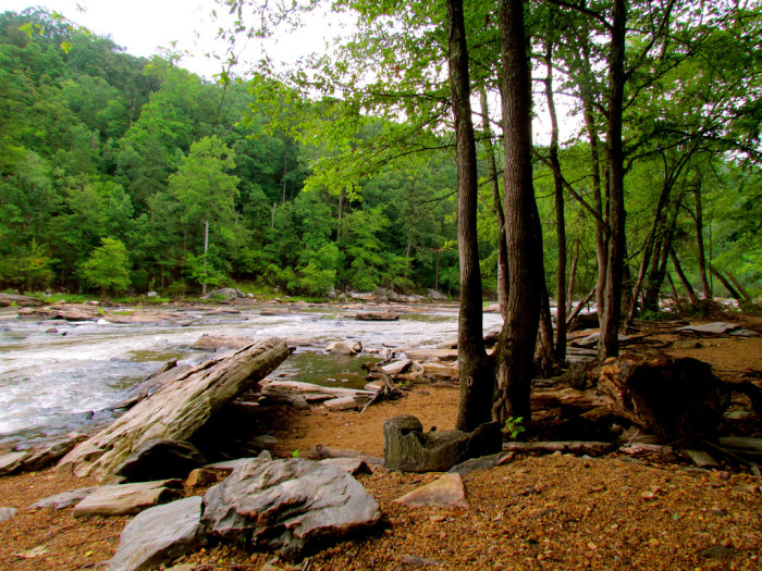 8. Sweetwater Creek State Park, Yellow Trail
