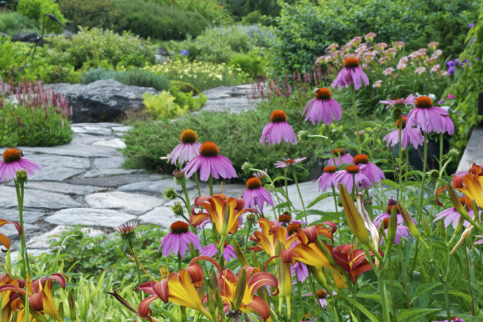11. Distant Hill Gardens in Walpole shows the colors of America in all its glory.