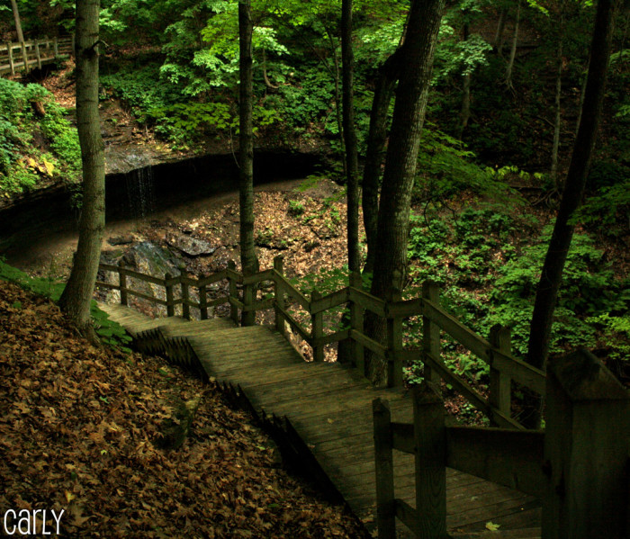 6. Or traverse through the various state parks that Iowa has to offer