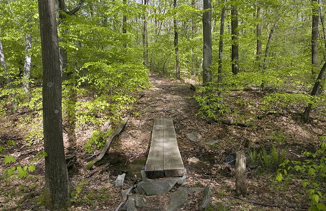 6. Laurel Highlands Hiking Trail