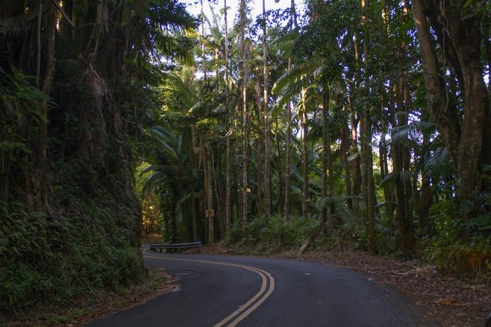 6. Old Mamalohoa Highway