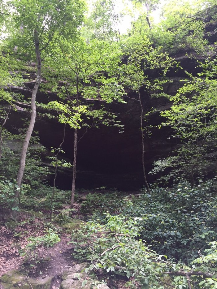 6.2. Trail Through Time at Pickle Springs Natural Area