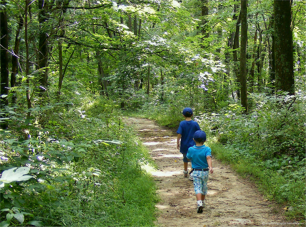 The 9 Best Hiking Trails in Indiana That are Under 5 Miles