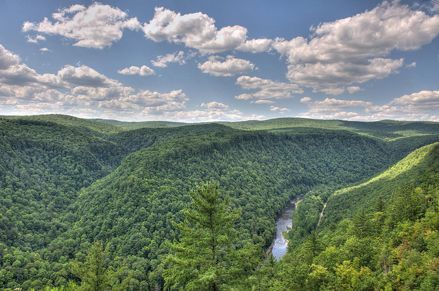 2. Few places can compare to Pine Creek Gorge, also known as the Grand Canyon of Pennsylvania.