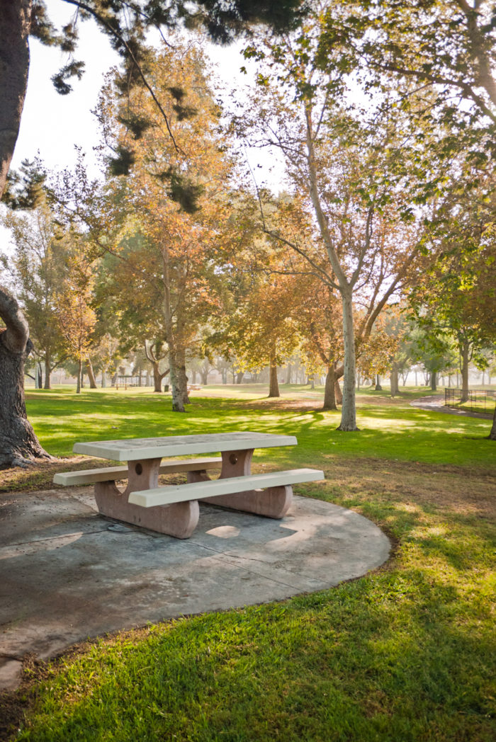 6. How about your own private picnic surrounded by trees? This spot in Los Angeles looks like a charming hideaway.