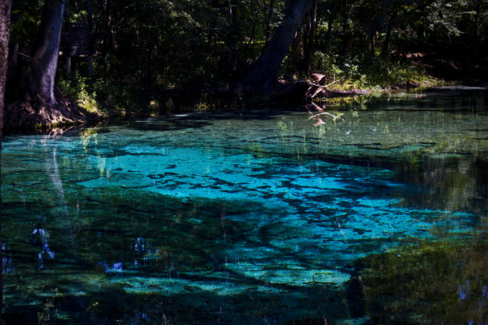 17. Take a dip in one of our cool and crystal-clear springs.