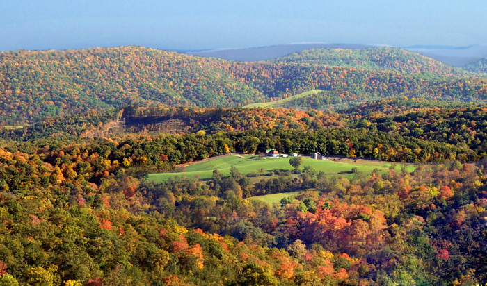 10. On the west side of the state are rolling mountains covered in forests.