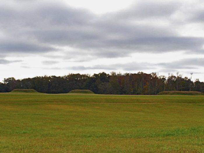 4. Moundville Archaeological Park
