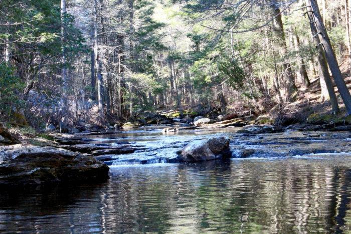 1. Millington Trail (Devil's Hopyard)